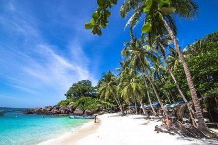 Плюсы отдыха во Вьетнаме и наиболее интересные направления